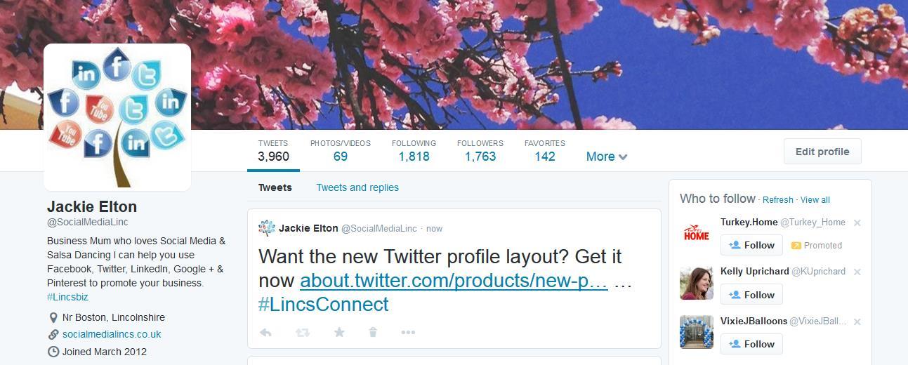 Screenshot of new Twitter profile
