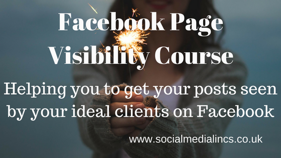 Facebook Page Visibility Course